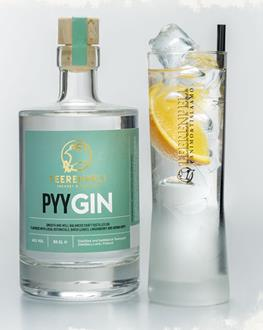 PyyGin Gin - Single Bottle